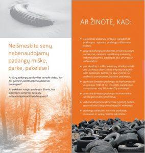 PIO_lankstinukas_galas1